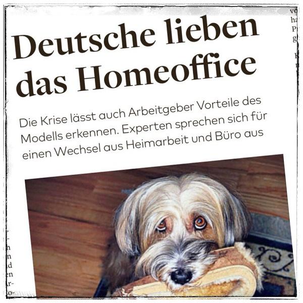 Nico Rose | Die Welt | Home Office