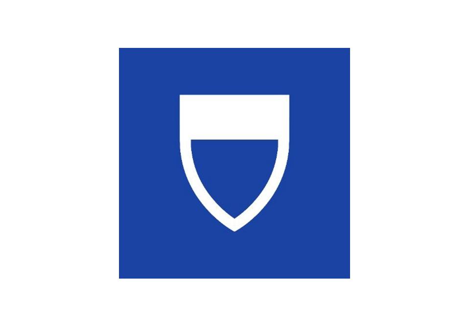 Harvard Business Manager   Logo